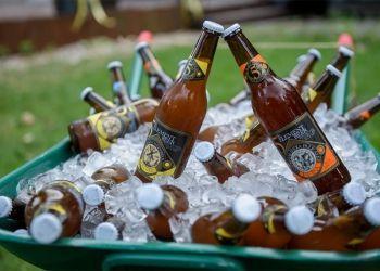 Daruvarski-dani-piva1
