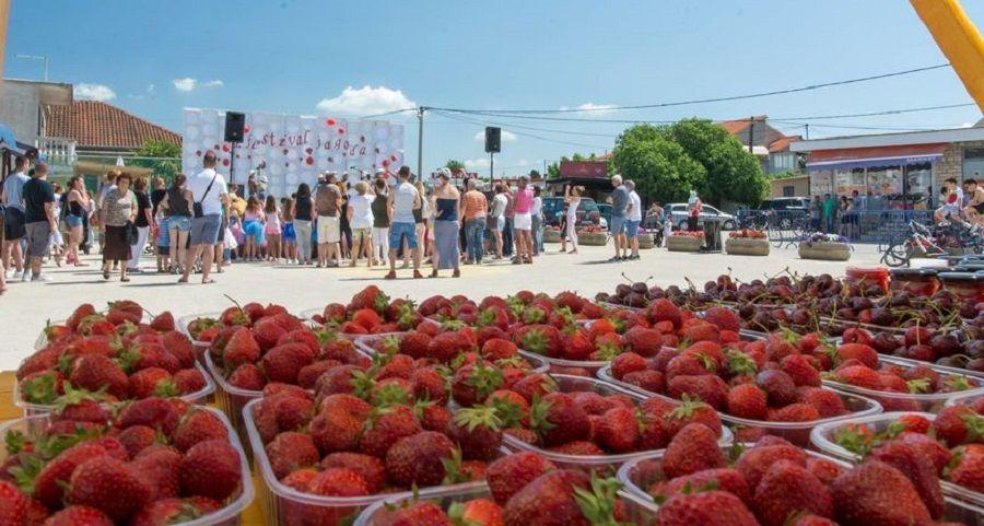 Festival jagoda u Selcu1