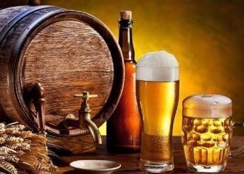 Karlovački dani piva1