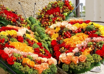 međunarodna izlozba cvijeća u Varaždinu1